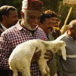 Sunil with lamb